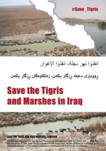 Save-the-Tigris-1-724x1024