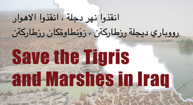 Workshop on the Save the Tigris and Iraqi Marshes Campaign, ICSSI Conference 201