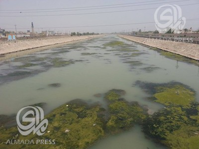 "Water Scarcity in Iraq: ""Our river is becoming a swamp of algae and waste"""