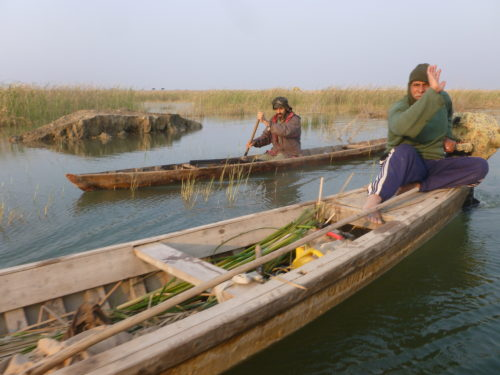 Iraq fears famed Marshes could be pulled from World Heritage List