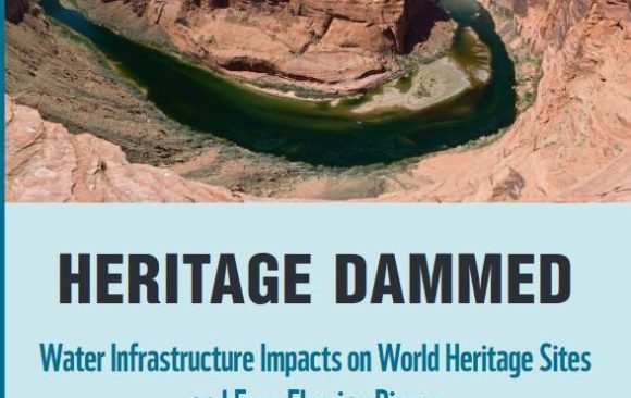 New Report to the World Heritage Committee: International Action Needed to Halt Dams and Save Marshes