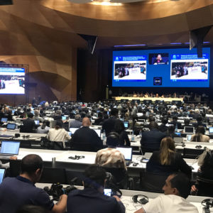 The World Heritage Committee Should Step Up to Protect the Iraqi Marshes From Harm – A Report On the 2019 WHC Session in Baku