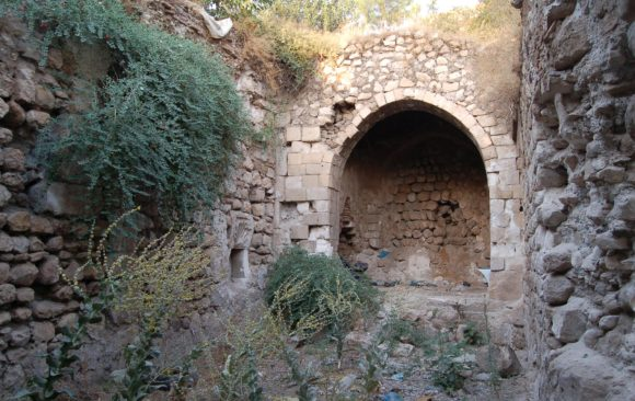 Excavation, Documentation and Conservation of Cultural Heritage in Hasankeyf Must Continue