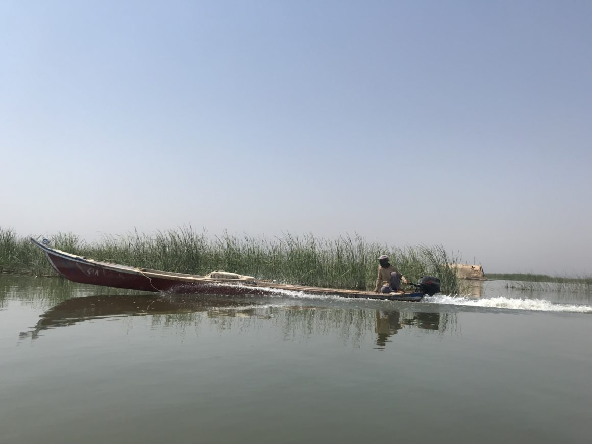 Letter From Save the Tigris to the UNESCO World Heritage Centre: Concerns and Requests regarding the Ahwar of Iraq